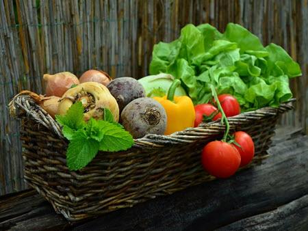 garden vegetable